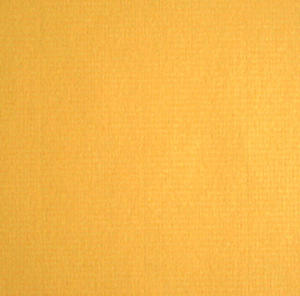Ingres A4 90g giallo oro x10