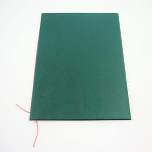 Okładka do dyplomu bez napisu zielona x1 - 2863791141