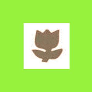 Dziurkacz ozdobny 1,6 cm - tulipan x1