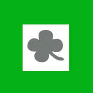Dziurkacz ozdobny 1,6 cm - koniczyna x1