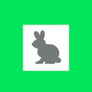 Dziurkacz ozdobny 1,6 cm - zaj�czek x1