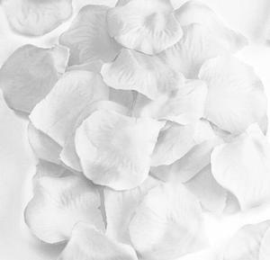 Płatki róż białe x1 - 2833963210