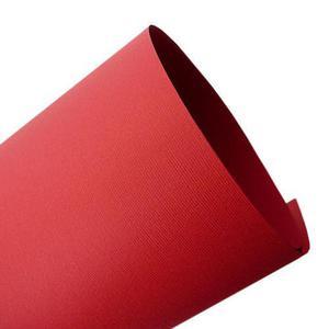 Nettuno A4 100g rosso fuoco x45 - 2882309834