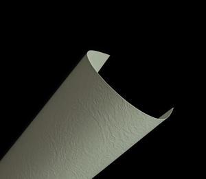Elfenbens A4 246g biały (134) skóra x100