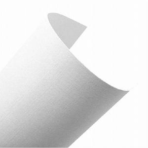 Elfenbens A4 246g biały (207) len 2 x100