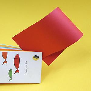 Rainbow A4 80g 28 czerwony x500