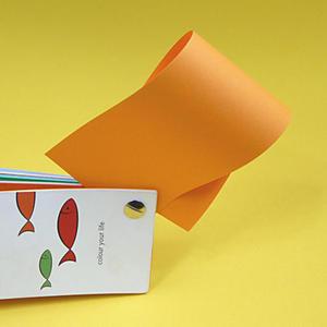 Rainbow A4 80g 22 pomarańczowy x500