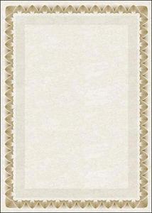 Dyplom A4 170g Arkady Z x25 - 2824960879