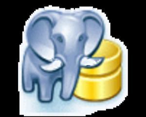 PostgreSQL Maestro Site Business License + 3 Year upgrades - 2824379286
