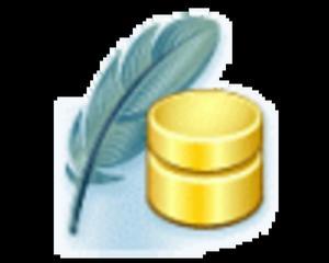 SQLite Maestro Site Non-commercial License - 2824379305