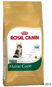 Royal Canin Feline Breed Kitten Maine Coon 36 4kg - 2847730350