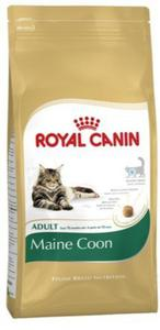 Royal Canin Feline Breed Maine Coon 31 2kg - 2844959847