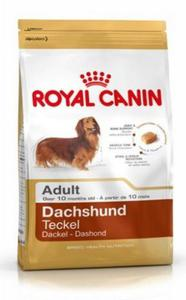 Royal Canin Dachshund 28 Adult 1,5kg - 2862653370