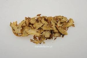 Dang Gui - Radix Angelicae Sinensis - Korzeń arcydzięgla chińskiego 50g Radix Angelicae Sinsesis - 2841272067