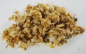 JU HUA - Flos Chrisanthemi - kwiat złocienia (pot.kwiat chryzantemy) 50g - 2841272078