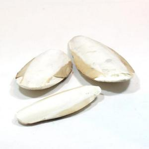 QUIKO - Sepia 10 kg - 2833375104