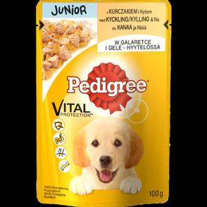 Pedigree Junior z kurczakiem w galaretce 100g - 2837404734