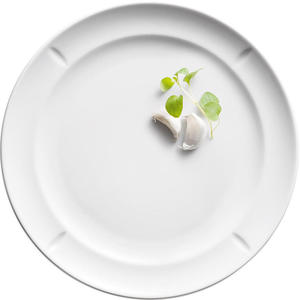 Talerz porcelanowy 23 cm Rosendahl Grand Cru Soft 4 sztuki - 2853763670