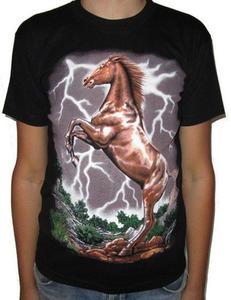 Koszulka indiańska - KOŃ - 2829283514
