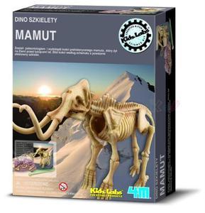Wykopaliska - Dino szkielety - MAMUT - 2428998241