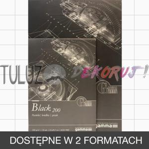 Blok techniczny TuLuz czarny 200 g/m2 10 arkuszy - 2866073419