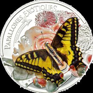 Andora - 2013, 5 Dinarów - Egzotyczny Motyl 3D - 2833159695