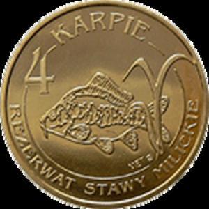 4 Karpie 2008 - Gmina Milicz - Dolina Baryczy