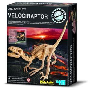 Wykopaliska Velociraptor - 4M - 1130194249