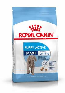 ROYAL CANIN MAXI JUNIOR ACTIVE 15kg - 2823050617