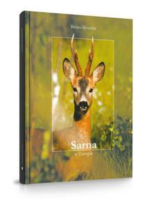 Sarna w Europie - Bruno Hespler - 2845239513