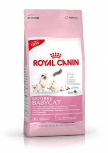 Royal Canin Babycat 34 4kg - 2498296527