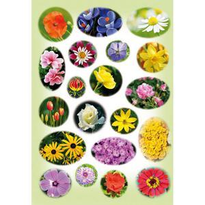 Naklejka kwiatki zielone - 2832213666