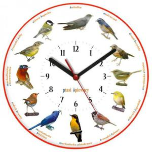 Zegar ścienny dla miłośników ptaków - 2827615203