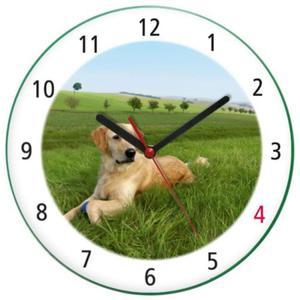 Zegar ścienny z psem GOLDEN RETRIEVER - 2827615204