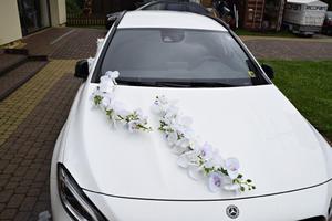 Dekoracja samochodu Dekoracja samochodu do ślubu Storczyk - 2874498216