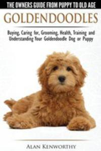Goldendoodles - The Owners Guide From Puppy To Old Age - Choosing, Caring For, Grooming, Health, Training And Understanding Your Goldendoodle Dog - 2852914889