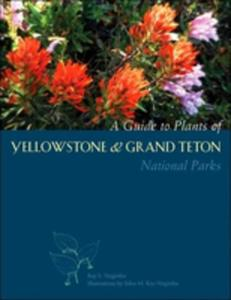 A Guide To Plants Of Yellowstone And Grand Teton National Parks - 2845348056