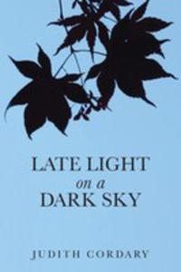 Late Light On A Dark Sky - 2871259841