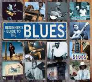 Beginner's Guide To Blues - 2839321477