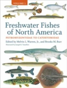 Freshwater Fishes Of North America - 2849922718