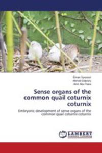Sense Organs Of The Common Quail Coturnix Coturnix - 2857255513