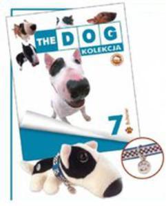 English Bull Terrier - 2840294665