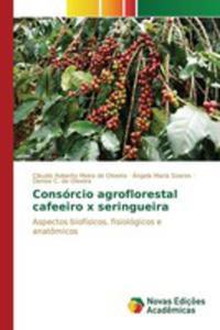 Consórcio Agroflorestal Cafeeiro X Seringueira - 2853024842