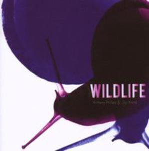 Wildlife - 2841466631