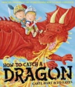 How To Catch A Dragon - 2839890110