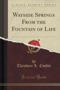 Wayside Springs From The Fountain Of Life (Classic Reprint) - 2853997686