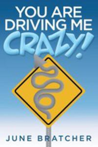 You Are Driving Me Crazy! - 2852920993