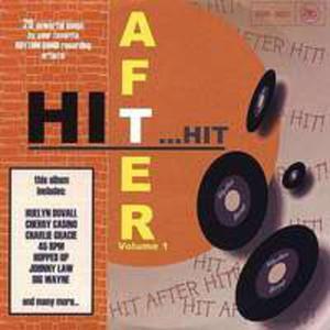 Hit After Hit / R�ni Wykonawcy - 2839732201