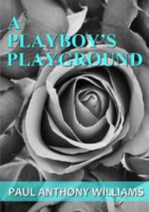 A Playboy's Playground - 2849953363