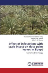 Effect Of Infestation With Scale Insect On Date Palm Leaves In Egypt - 2857167008